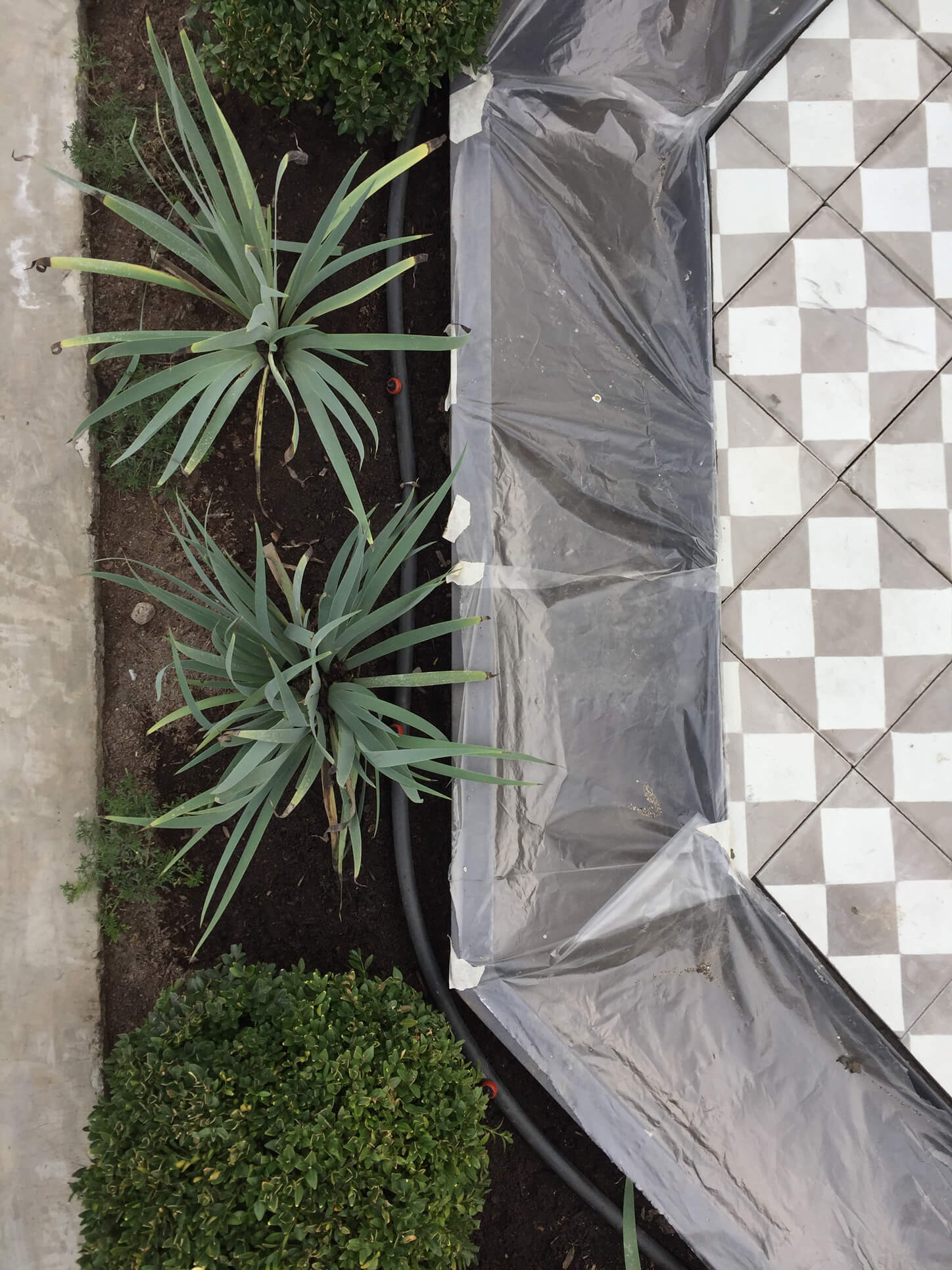 construcción-de-jardines-tallotaller