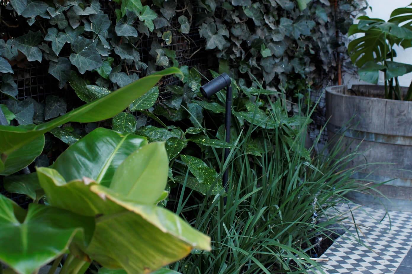 jardín-pequeño-iluminación