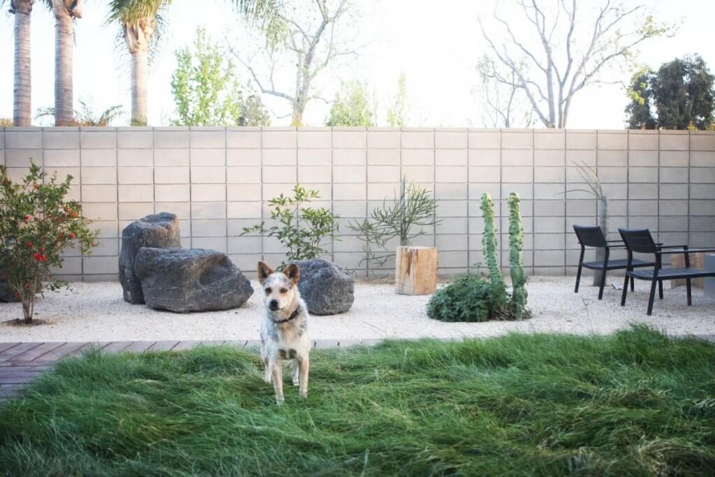 jardin minimalista