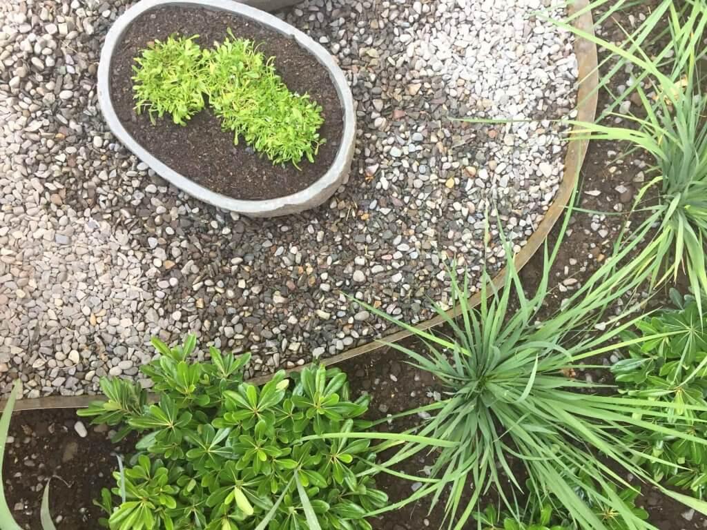 Diseño-De-Jardines-Tallo-Taller-Jardines-Pequeños-8