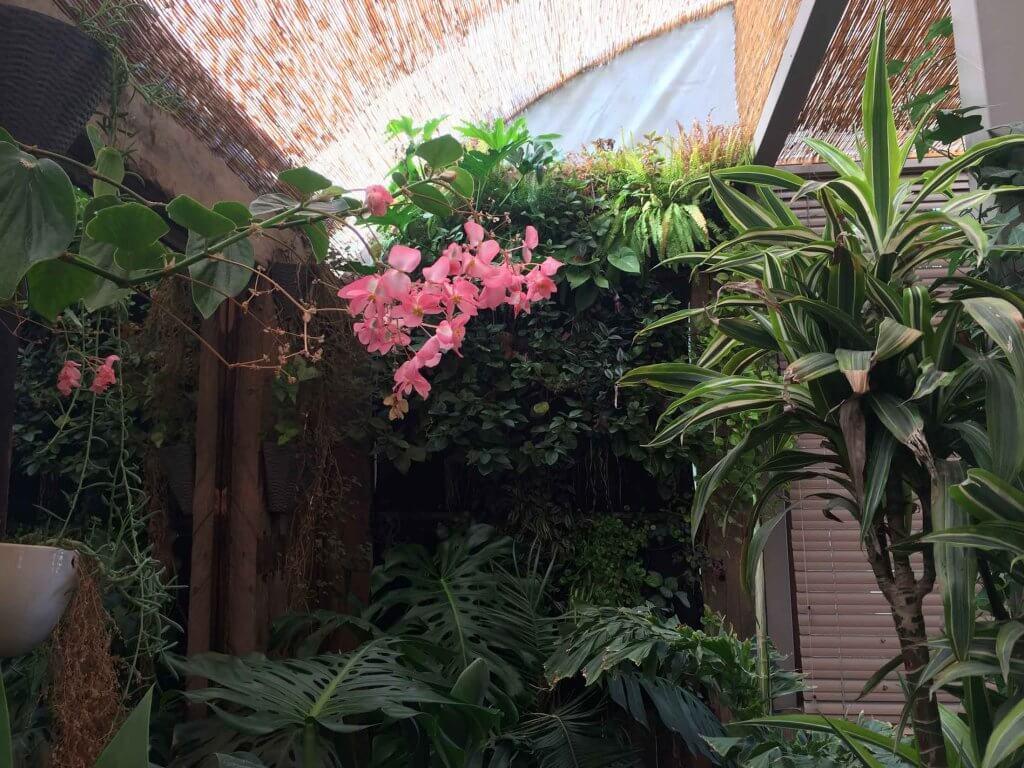 Jardin-Vertical-Tallo-Taller-Casa-Molle-4