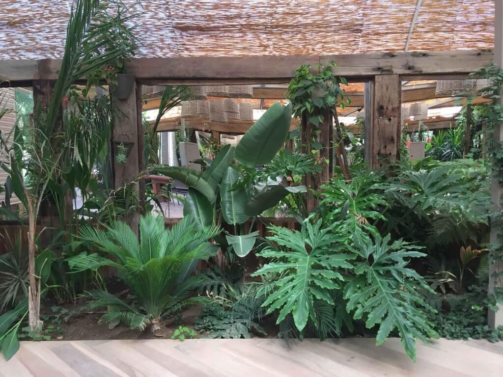 Jardin-Vertical-Tallo-Taller-Casa-Molle-7