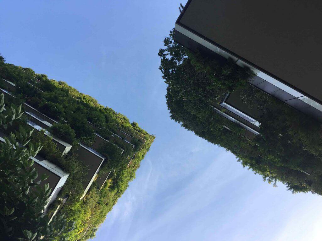 Bosco-Verticale-Entre-las-dos-torres-Tallo-Taller