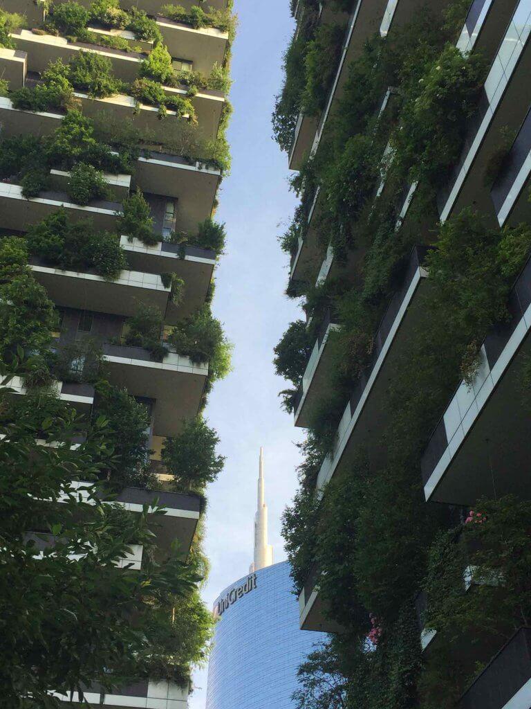 Bosco-Verticale-Areas-Verdes-en-Fachadas-Tallo-Taller