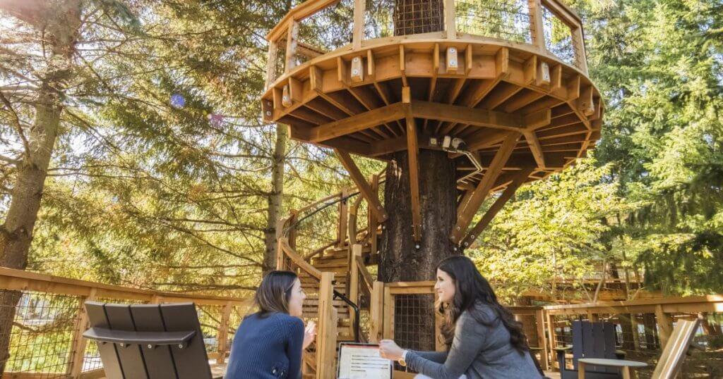 Casa de árbol de Microsoft donde se pueden realizar reuniones corporativas.