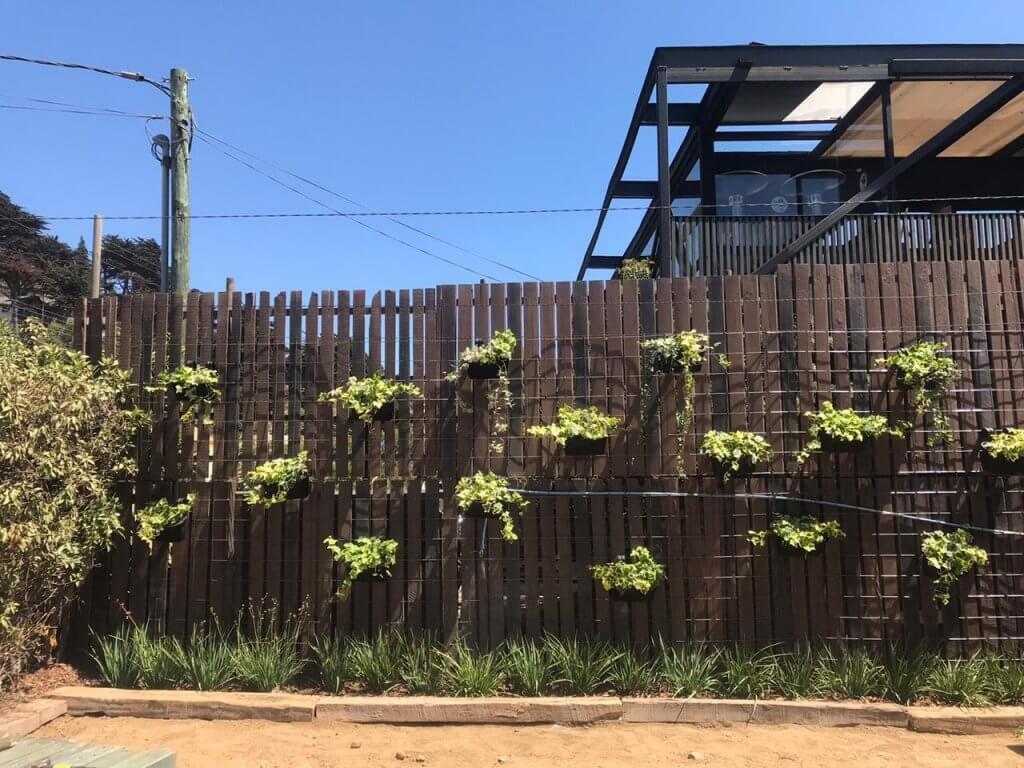 Diseño de jardín vertical en zona de Jardín Boscoso. Se instaló una grilla metálica para poder colgar maceteros a diferentes alturas.