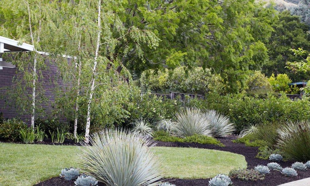 Jardín con una pequeña área de pasto. El resto son macizos arbustivos con diferentes materiales de suelo como piedras y tierra oscura.