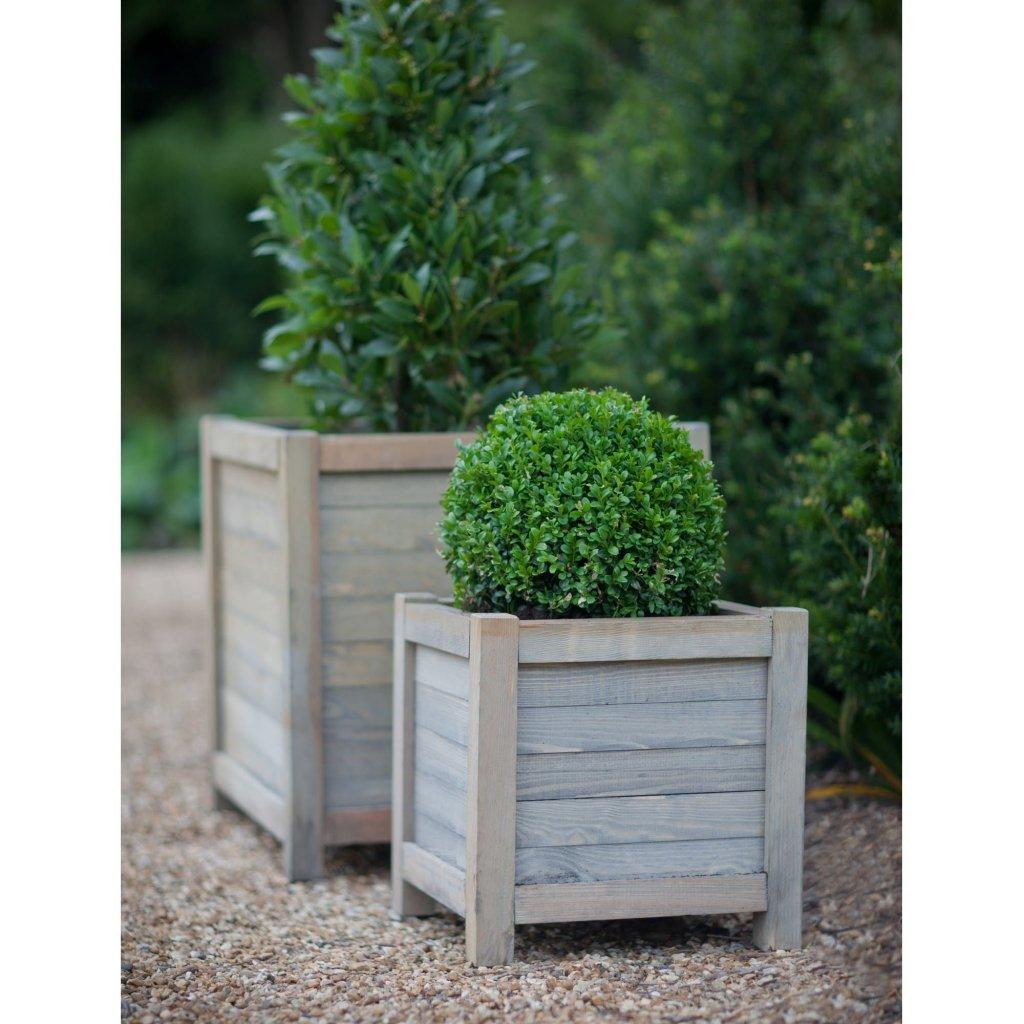 Jardineras de madera cuadradas con boj y laurel comestible.