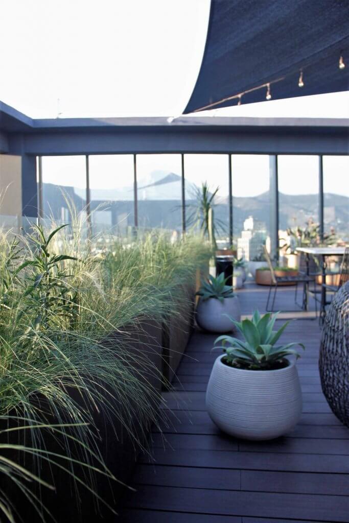 Línea de jardineras con Stipa caudata y maceteros redondos rayados con Agave attenuata